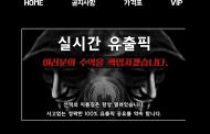 [먹튀사이트]FPICK먹튀 에프픽먹튀 fp-07.com 유출픽 먹튀검증